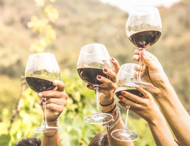 winetour1